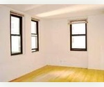 Beautiful Large Studio**Steps from Wall street**Condo Building** Great Investment**steps from south street sea port**stock exchange**