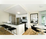 ~~LIC*NO FEE~~2 Br Open kitchen ~~Amazing view~~New Rental~~Door man~~Gym